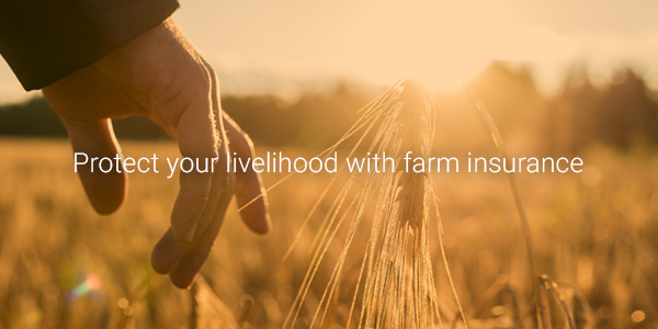 Insurance for farmers – a quick overview